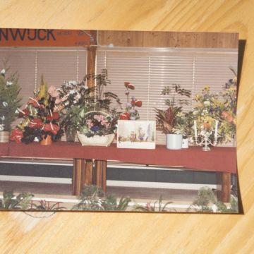 Tuinwijck oud-4919